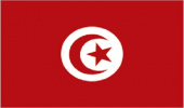 A Reflection on Tunisia Journals in ISC